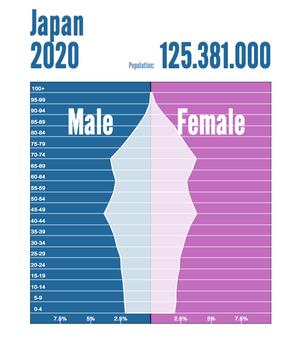 人口構成日本